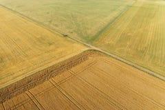 Vista areale del campo di grano Immagini Stock Libere da Diritti