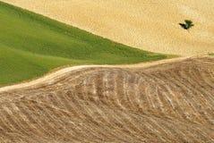 Vista areale sul paesaggio di Toscanian Fotografie Stock