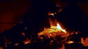 Vista ascendente cercana de la madera ardiente en chimenea Fondos hermosos almacen de video