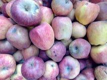 Vista ascendente próxima das maçãs avermelhadas orgânicas frescas arraged na cesta de fruto foto de stock
