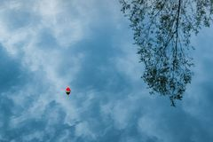 Vista ascendente próxima do céu refletindo, das nuvens e da árvore do lago azul fotografia de stock