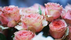 Vista ascendente próxima do ramalhete bonito de rosas cor-de-rosa video estoque