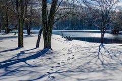 Vista astratta di inverno del lago e delle sedie Abbott immagine stock