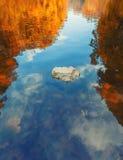 Vista astratta variopinta della riflessione di un albero sulle ondulazioni della superficie dell'acqua Fotografia Stock