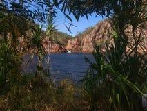 Vista através da folha em uma cachoeira Imagem de Stock