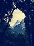 A vista através das árvores com montanha nuvem-coberta cobre Imagens de Stock Royalty Free