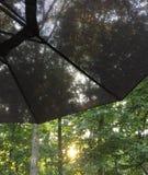 Vista através de um guarda-chuva cinzento Imagens de Stock
