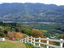 Vista através do vale de Orosi em Costa Rica foto de stock royalty free