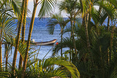Vista através das árvores Imagem de Stock Royalty Free