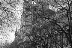 Vista attraverso i rami sulla facciata vittoriana Fotografia Stock Libera da Diritti