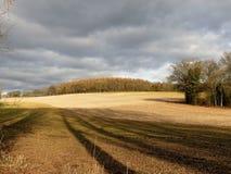 Vista attraverso il campo al legno di Scrubbs, Sarratt, Hertfordshire fotografia stock