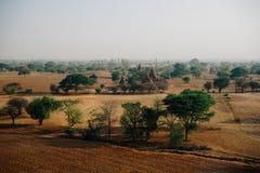 Vista attraverso il campo della pagoda con gli alberi in Bagan Myanmbar Burma Fotografia Stock
