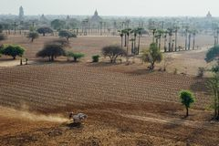 Vista attraverso il campo della pagoda con gli alberi in Bagan Myanmbar Burma Immagine Stock