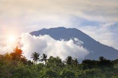 Vista attraverso la giungla con le palme su un vulcano Agung in nuvole Bali, Indonesia Immagine Stock