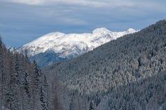 Vista austriaca delle alpi di inverno Immagini Stock Libere da Diritti