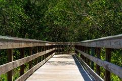 Vista baja del paseo marítimo de madera en la Florida Foto de archivo
