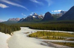 Vista Banff Alberta Canada del fiume dell'arco Immagini Stock