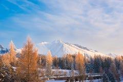 Vista bella sulla montagna coperta di neve e sull'albero dipinto dentro Immagine Stock Libera da Diritti
