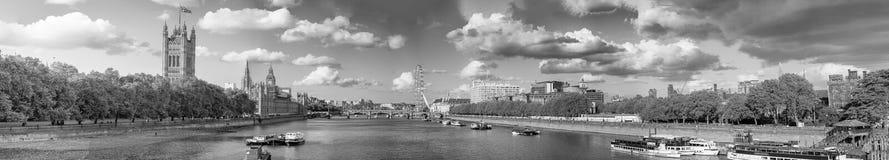 Vista in bianco e nero degli edifici di Londra lungo il wity Westm di Tamigi fotografia stock