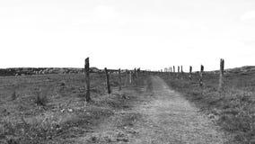 Vista in bianco e nero del paesaggio della campagna nordica della Spagna, colline coperte di erba al giorno soleggiato di estate archivi video