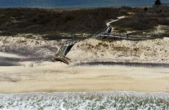 Vista Bird's-eye de la playa Fotografía de archivo