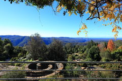 Vista blu del giardino botanico delle montagne alla caduta Fotografia Stock