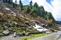 Vista bonita da estrada do vale de Naran, Paquistão Imagem de Stock