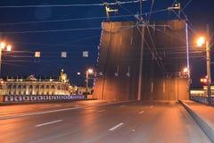 Vista bonita da ponte na noite, St Petersburg, Rússia fotos de stock royalty free