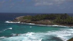 Vista bonita da praia com ondas video estoque
