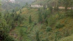 Vista bonita das árvores nas montanhas imagens de stock royalty free