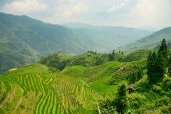 Vista bonita de terraços esmeraldas do arroz de Longjie's e de montanhas circunvizinhas fotografia de stock