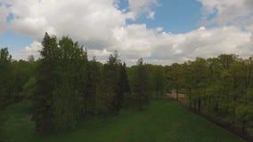 Vista bonita do ar à geometria da paisagem no parque de Pavlovsk filme