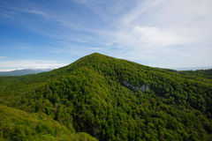 Vista bonita do Cáucaso selvagem Foto de Stock Royalty Free