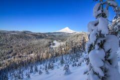 Vista bonita do inverno da capa da montagem em Oregon, EUA Foto de Stock
