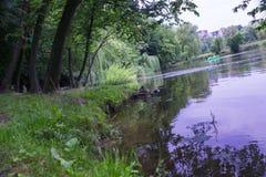 Vista bonita do lago fotografia de stock royalty free