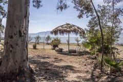 Vista bonita do lago do chapala quadro com árvores e um guarda-chuva da palma imagens de stock royalty free