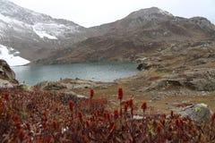 Vista bonita do lago com grama e as geleiras vermelhas na montanha sob o céu nebuloso imagens de stock royalty free