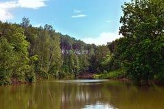Vista bonita do lago na floresta imagens de stock