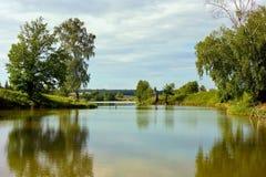 Vista bonita do lago na floresta fotos de stock royalty free