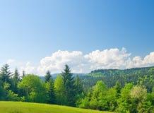 Vista bonita do montanhas Foto de Stock