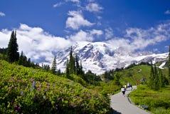 Vista bonita do Monte Rainier fotografia de stock royalty free