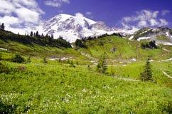 Vista bonita do Monte Rainier foto de stock royalty free