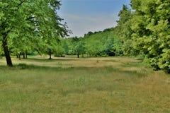 Vista bonita do parque Imagens de Stock