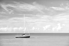 Vista brilhante atrativa da praia marinha bonita colorida exótica Imagem de Stock Royalty Free