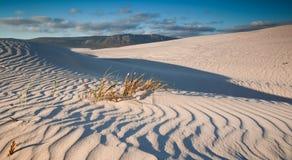 Dunas de areia Rippled foto de stock