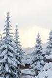 Vista cênico da borda da estrada, Washington Imagens de Stock Royalty Free