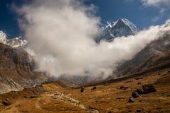 Vista cênico da cauda dos peixes de Machapuchare cercada por nuvens e por trajeto ao acampamento base de Annapurna, Himalayas foto de stock royalty free