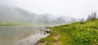 Vista cênico da floresta, do prado e do lago com névoa no dia dentro Fotos de Stock