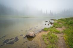 Vista cênico da floresta, do prado e do lago com névoa no dia no lago Tipzoo, mt mais chuvoso, Washington, EUA Fotografia de Stock Royalty Free