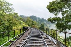 vista cênico de árvores verdes e da estrada railway vazia, sri foto de stock royalty free
